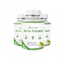 Nutripath Amla Extract 40% -3 Bottle