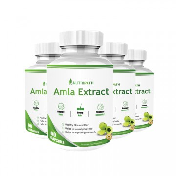 Nutripath Amla Extract 40% -4 Bottle