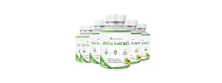 Nutripath Amla Extract 40% -6 Bottle